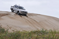 4x4 gesell